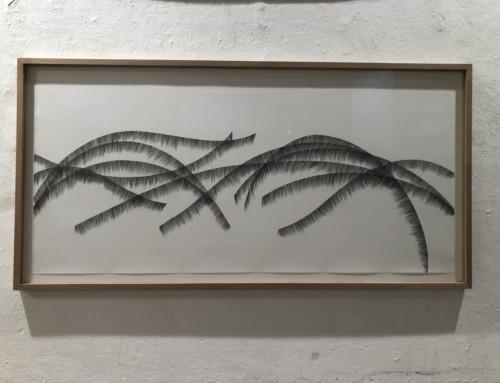 COUCHEZ-LES DANS L'HERBE / feutre, crayon sur papier